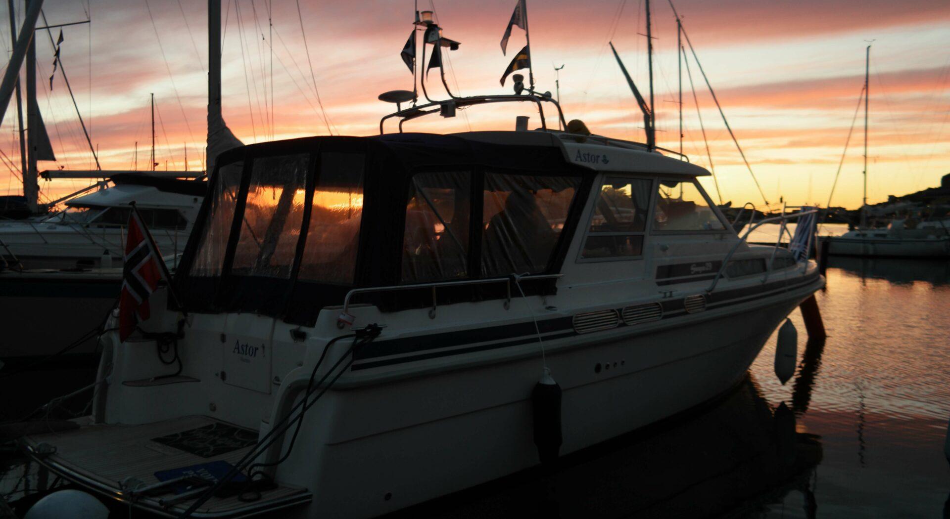 Astor i solnedgang