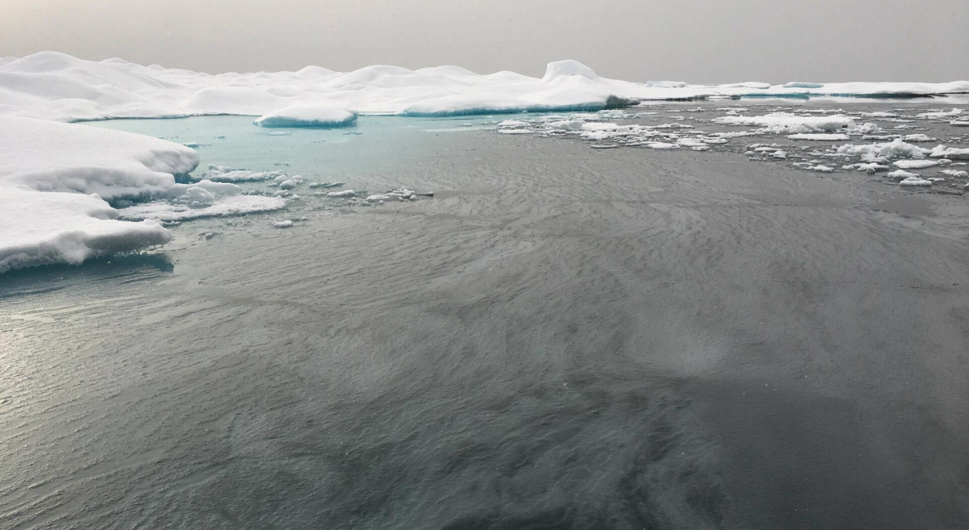 Isen har så smått begynt å legge seg. Sjokkfryser vannet, riskerer vi å bli frosset fast på stedet. Fotoꓽ Manuela Legoretta