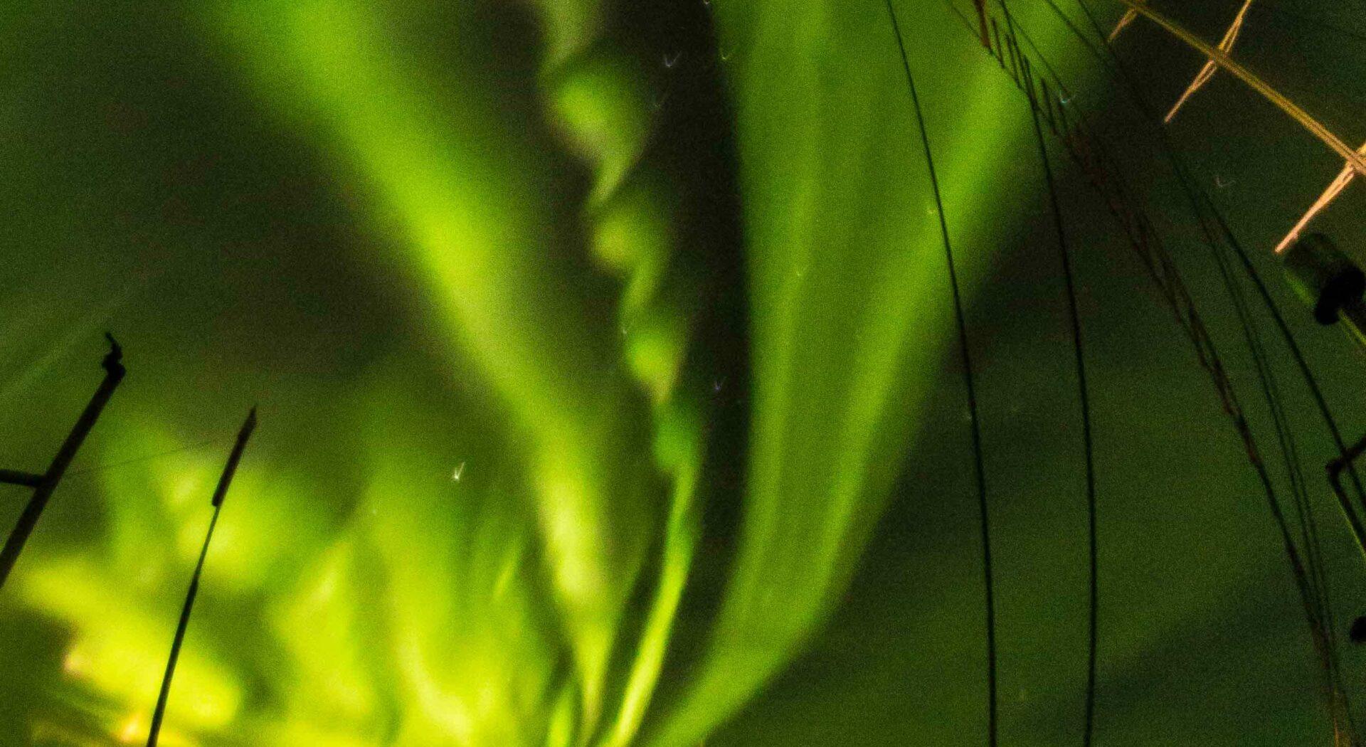 Nedtellingen til vinter og mörketid var startet, og himmelen vartet opp med et ellevilt show. Photo; Ben Cooke