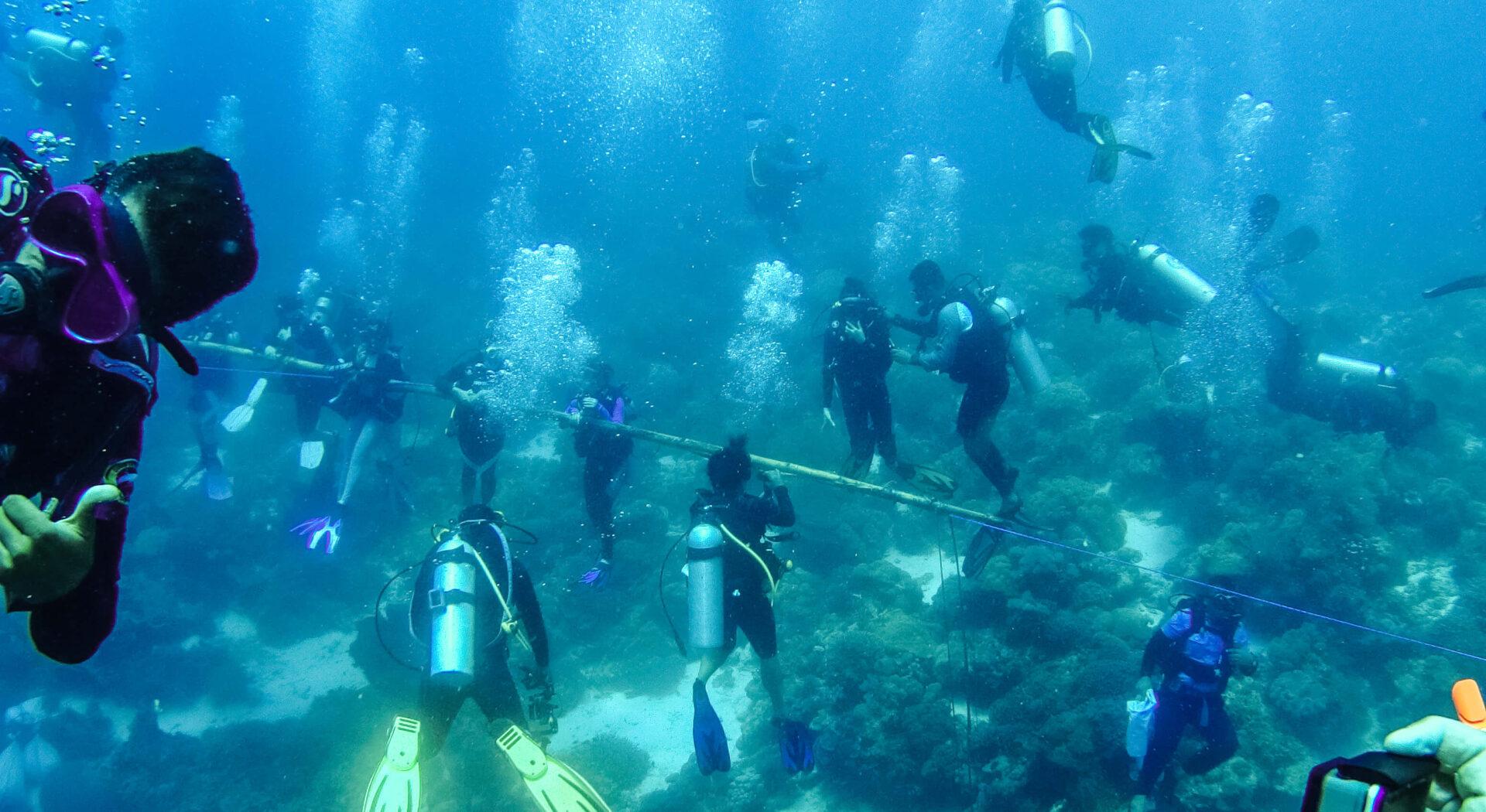 Her er lokale dykkere og seilere i sving med å heise den lange bambusstanga som skulle bære nasjonalflagget.