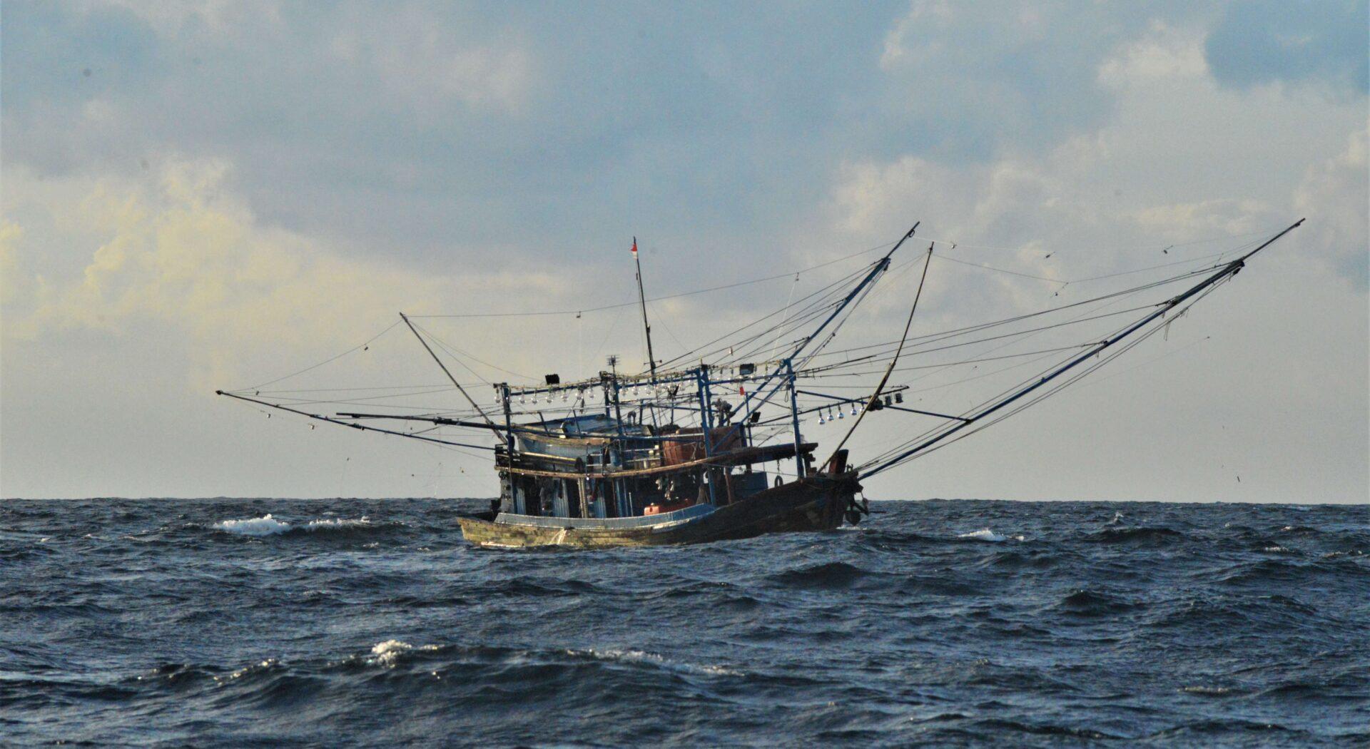 Indonesias svar på USAs 'Deadliest Catch'. Selv på høylys dag vekker de karakteristiske Calamarestrålerne oppmerksomhet på lang avstand. Du vil nødig bli fanget i dette nettet